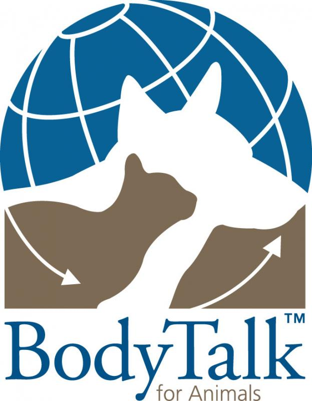 BodyTalk for Animals Cape Town